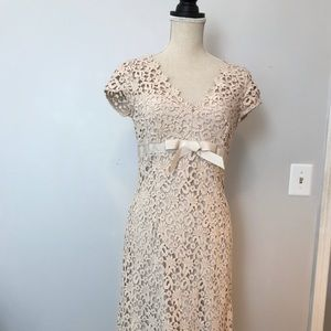 Cheats B champagne colored lace cocktail dress